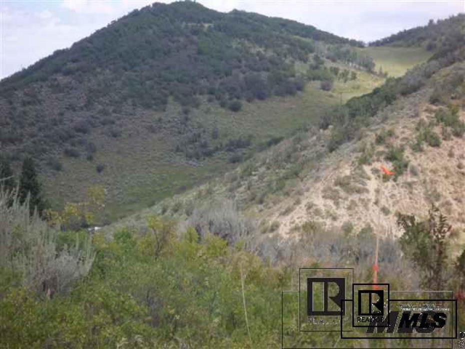 24253 County Road 49z Photo