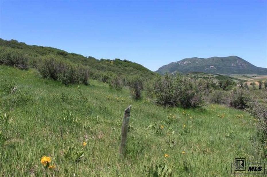 26705 Wild Iris Path Photo