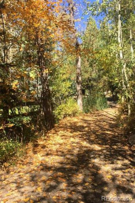 Path to Common Area Cabin