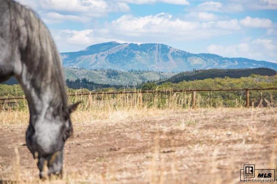 Bella Vista Photo