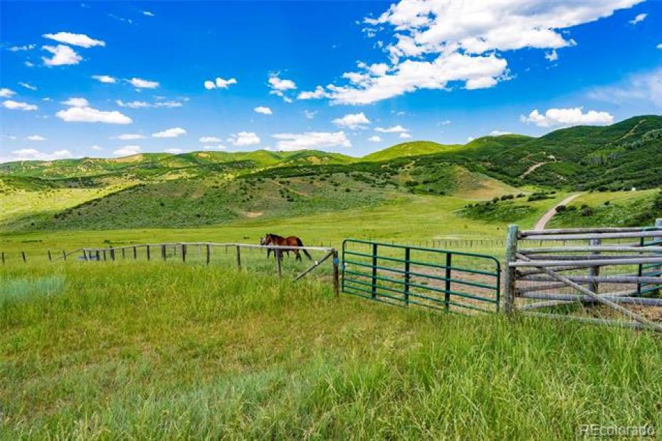 31335 Deerwood Ranch Photo