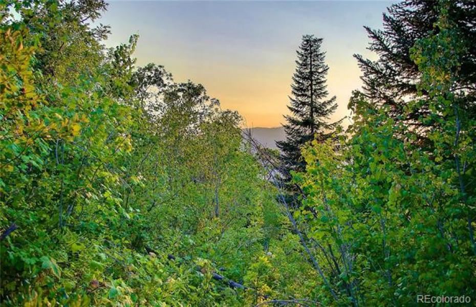 2560 Ski Trail Photo