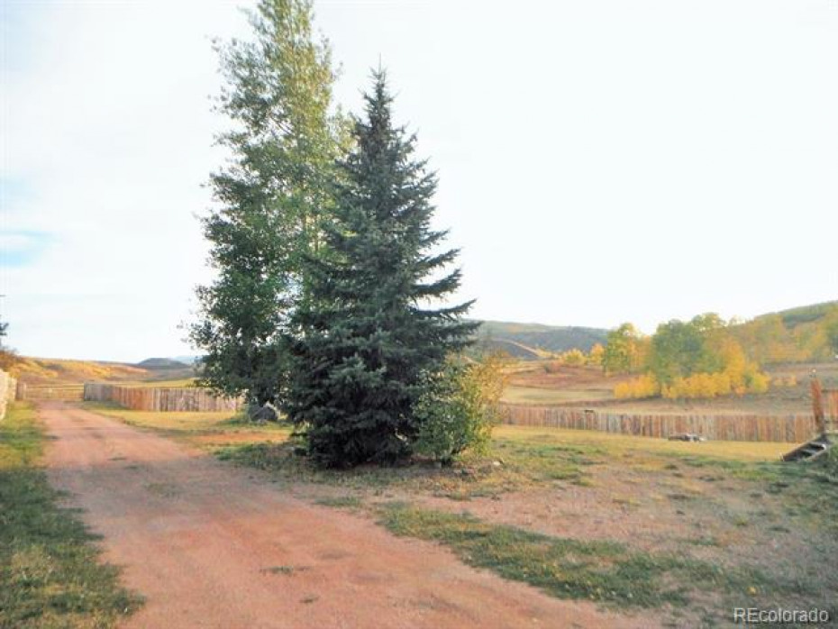 Private driveway entrance, circle drive with pine trees in the middle provides room for extra parking.