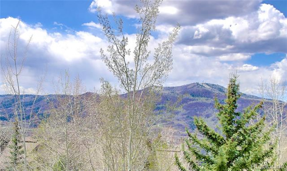 Beautiful views from every deck including this one of Emerald Mountain.