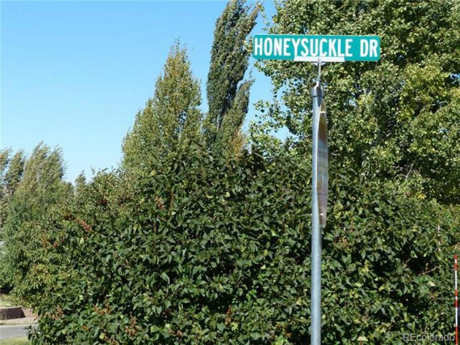 302 Honeysuckle Photo