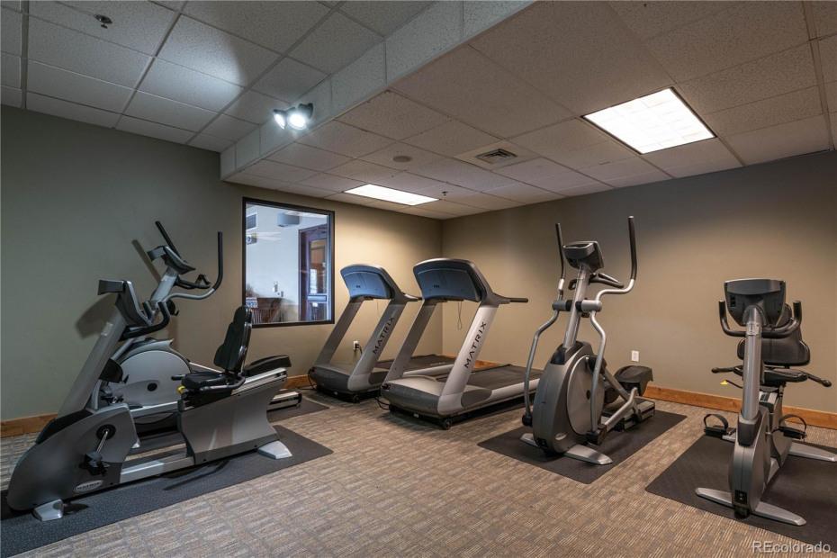 Owner's Gym
