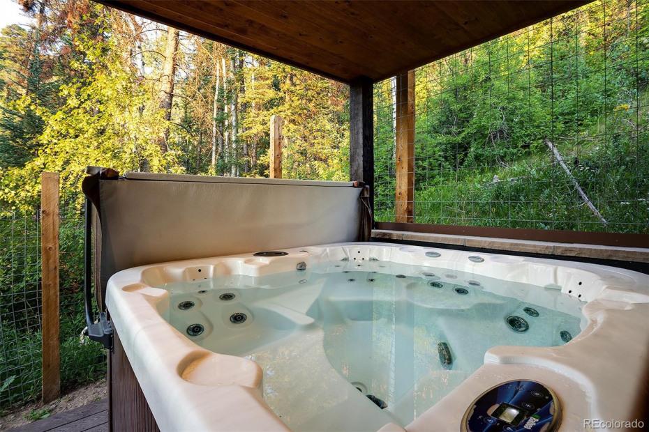 Master Suite Hot Tub