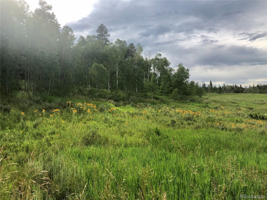 Photo is of actual land on Lot 182 Ute Trail