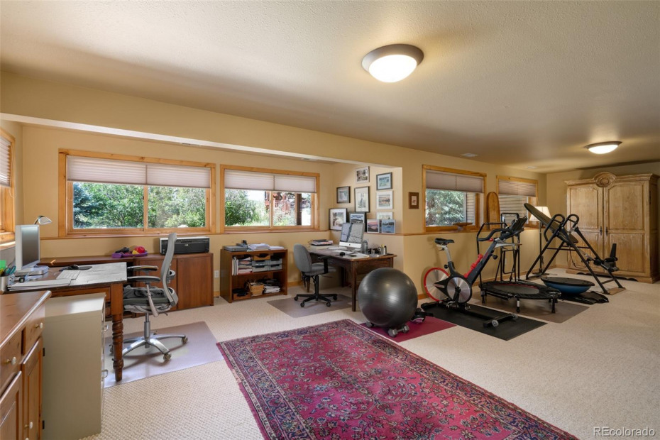 Lower Level Family Room with tons of light and room