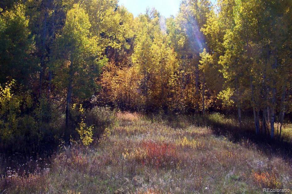 29105 Harrison Trail Photo