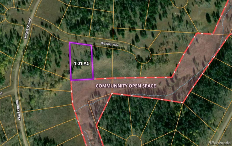 1.01 acre lot adjacent to open space