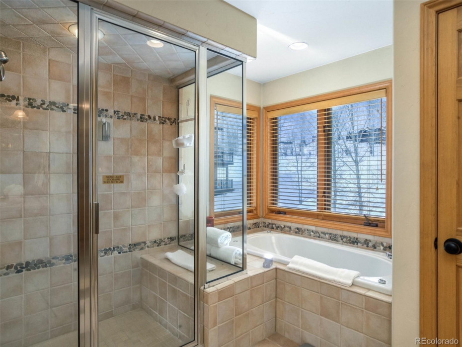 Steam Shower and Jet Tub