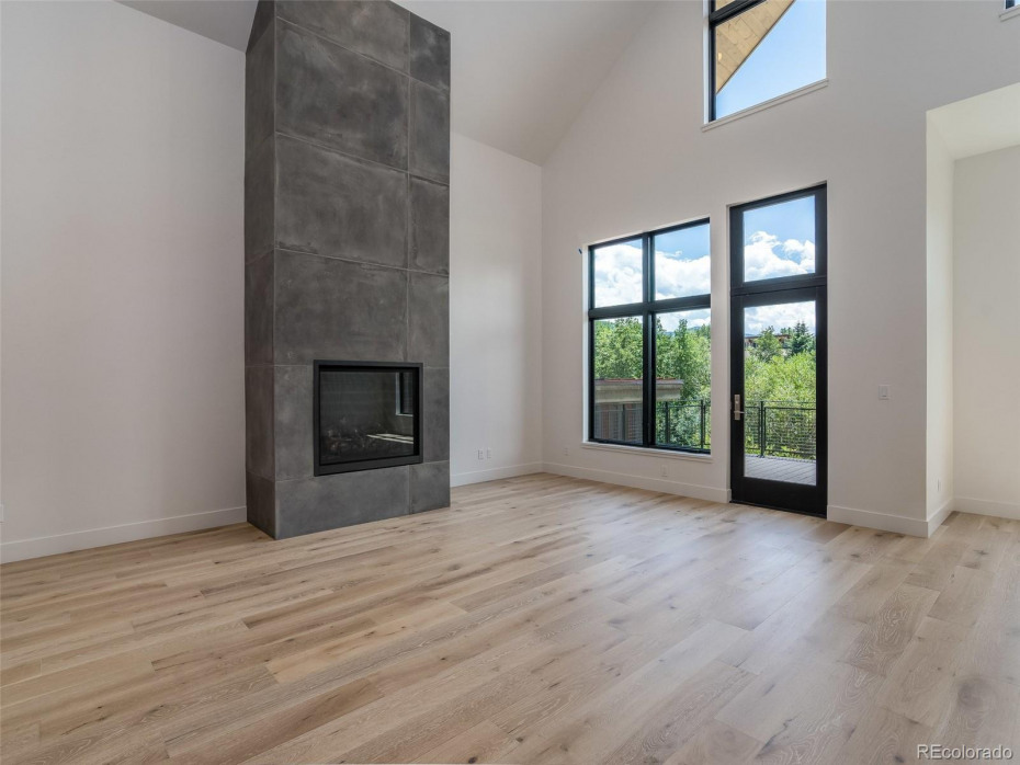 Mountain Eclectic concrete surround fireplace in Unit T2 (middle unit, sold)