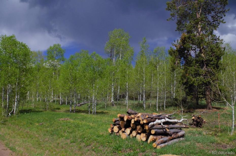 33177 Wenatchi Trail Photo