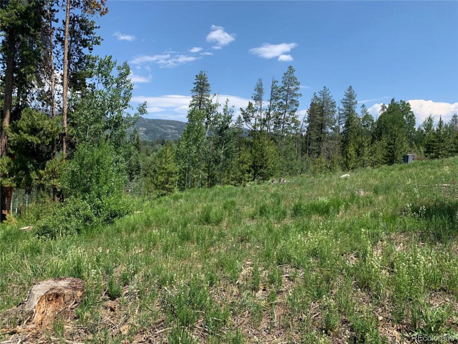 32448 Ute Trail Photo