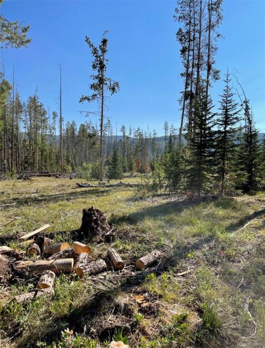 02 Cutter Trail Photo