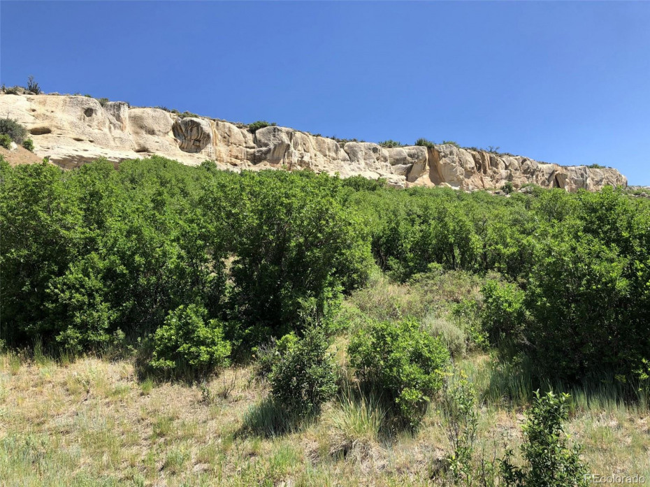 37125 Aspen Bluff Terrace Photo