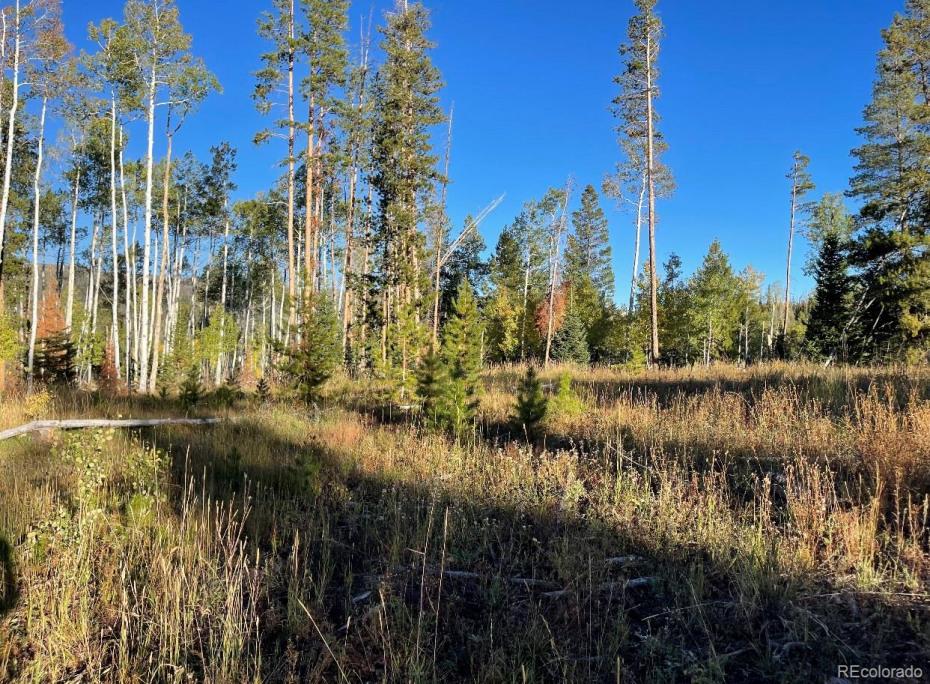 Surrounding area sees plenty of wildlife viewing.