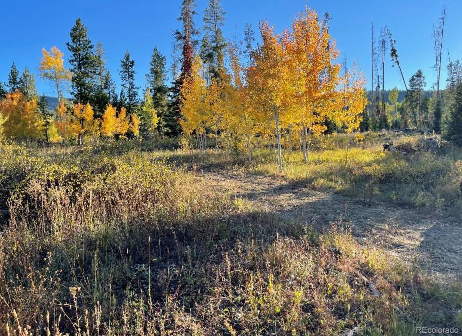 04 Cutter Trail Photo