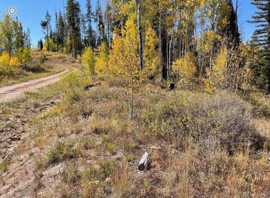 07 Whiffle Tree Trail Photo