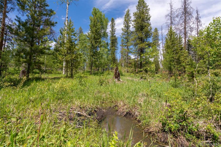 33010 Colt Trail Photo
