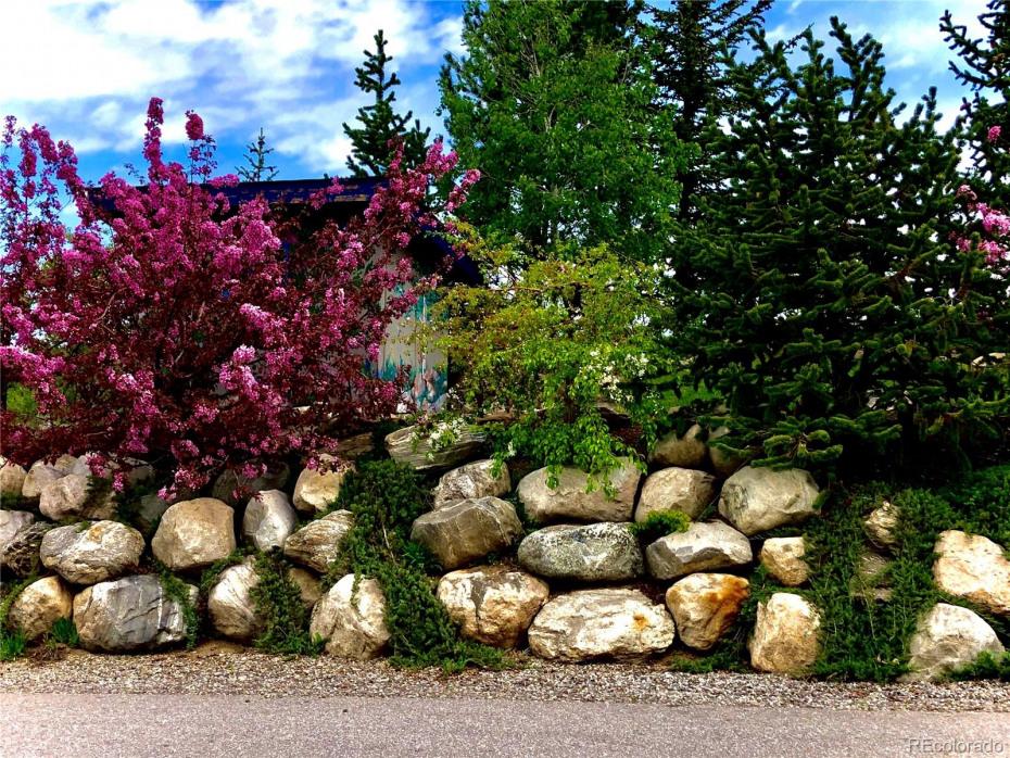 Landscape between drive & garden shed