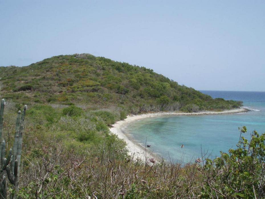 Views Overlooking Ditleff Beach