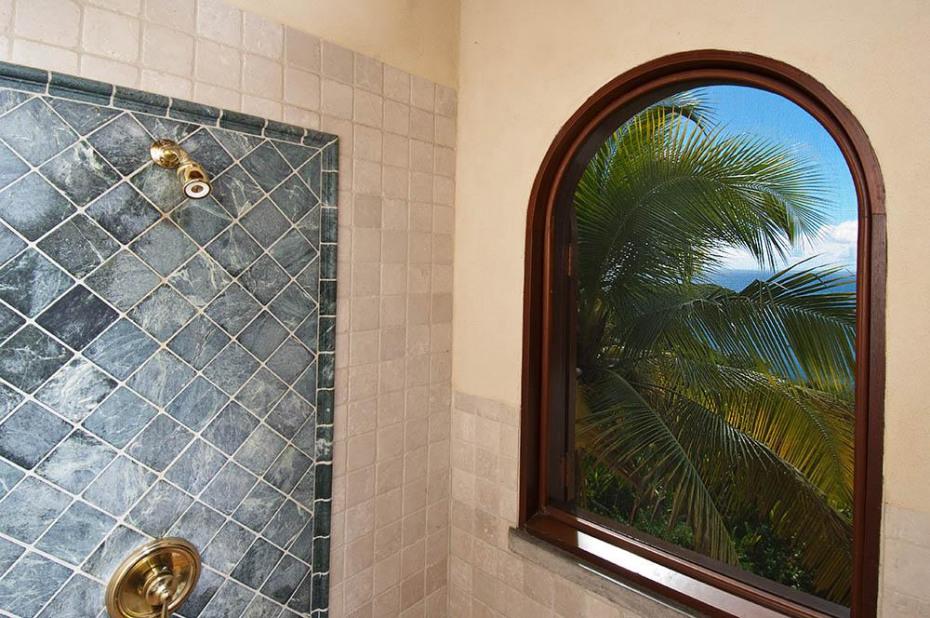 CDS Shower detail