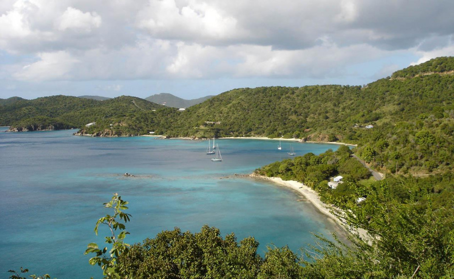 VIEW OVER LONG BAY
