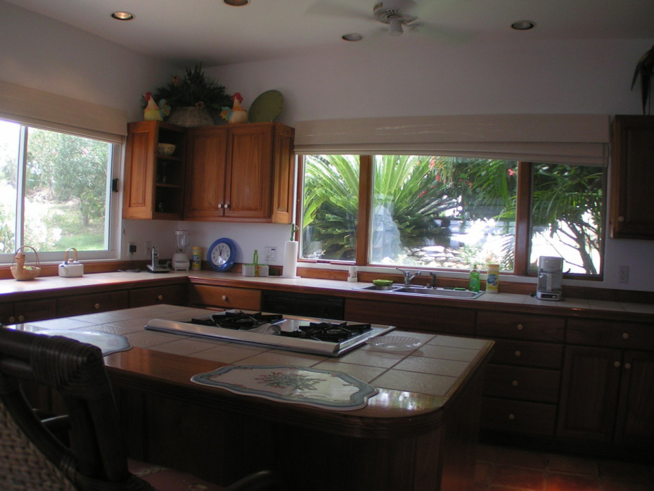 Gourmet kitchen with custom cabinets