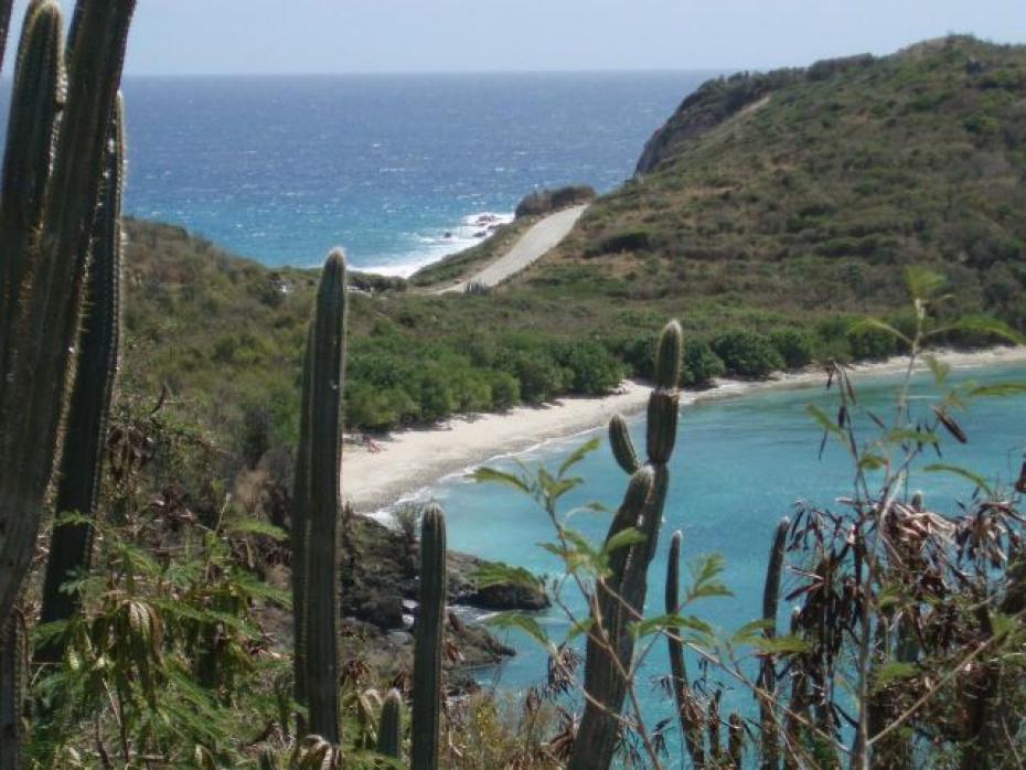 FLAT White Sandy Beach Parcel
