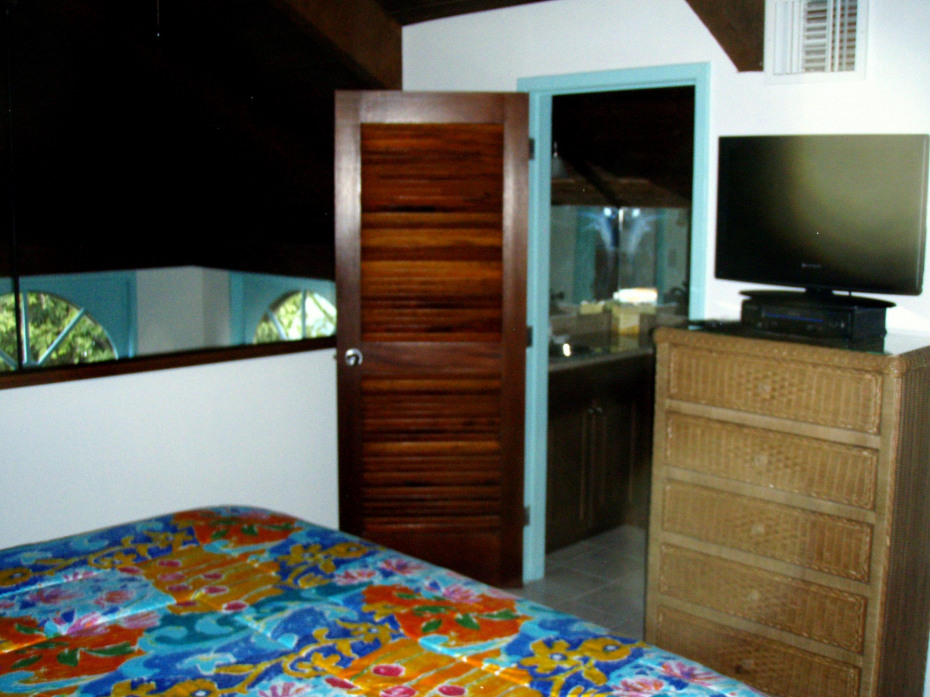 Loft bedroom and 1/2 bath
