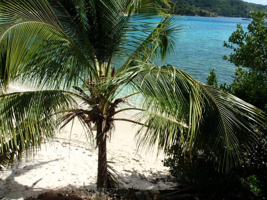 View of White Sand Beach
