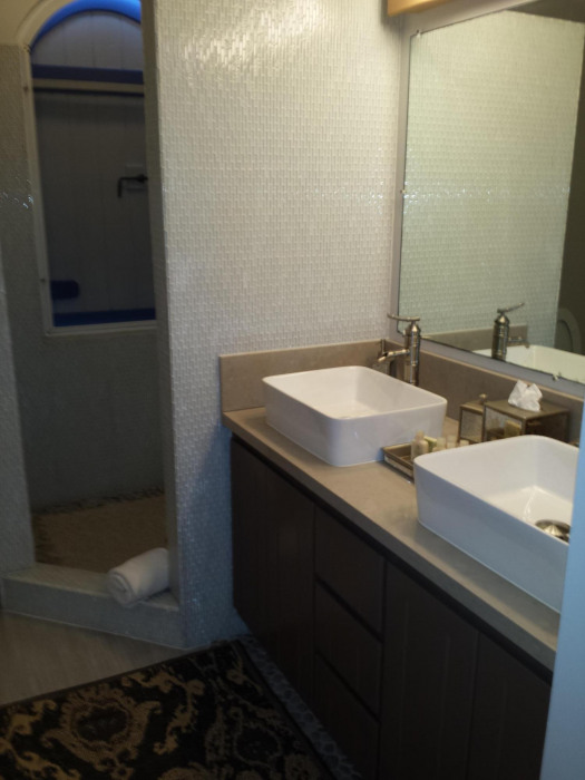 Lower Suite Bathroom