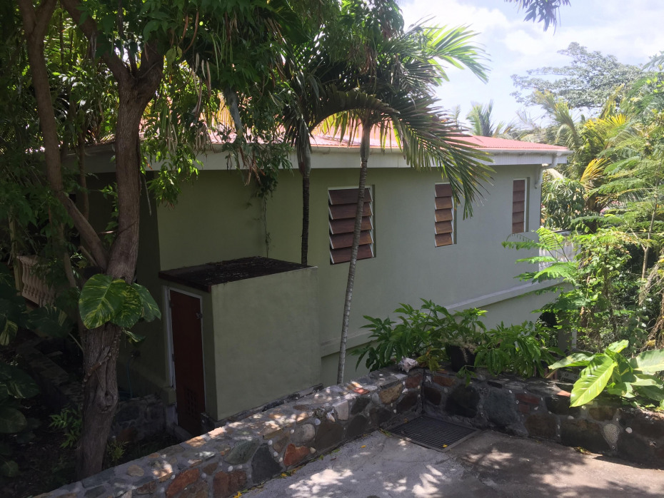 Geiger house