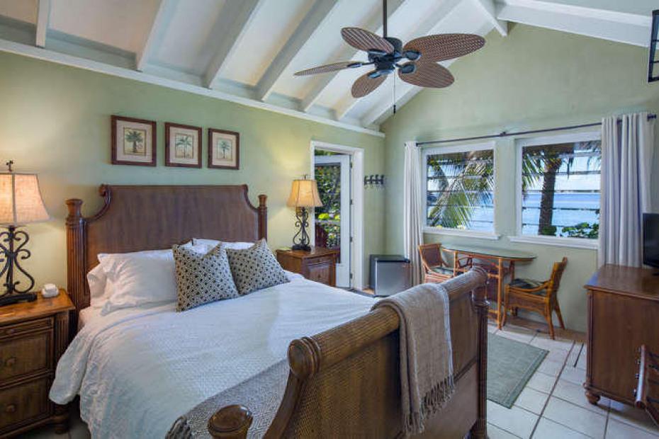 021 Palm suite