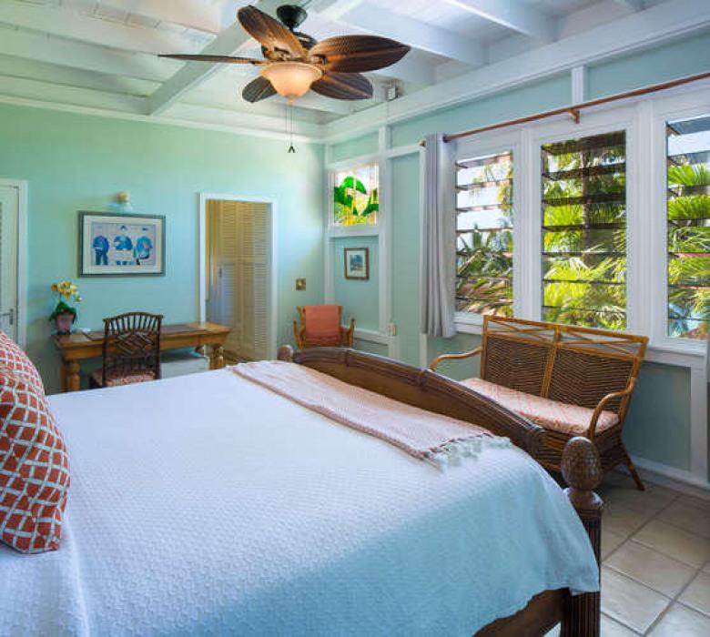 031 Parrot suite