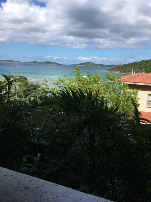 view from 1-bedroom balcony