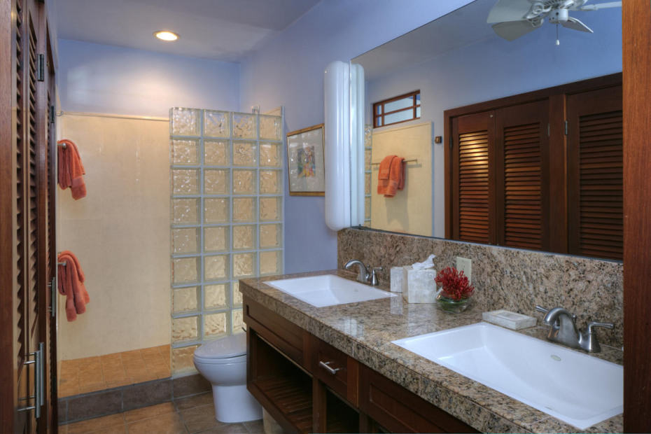 Lower Guest Bath