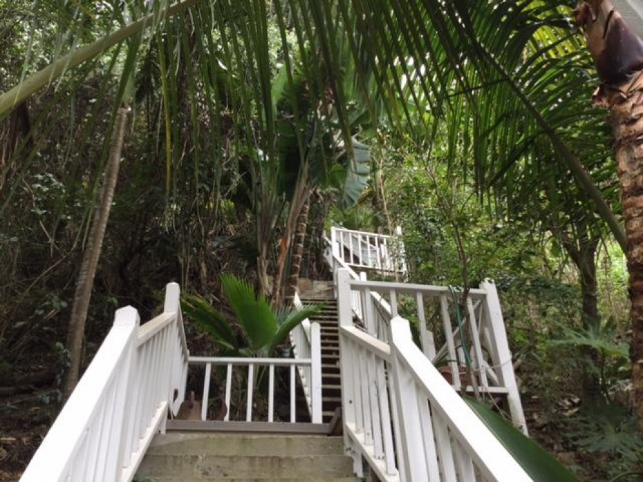 Steps to Cottage