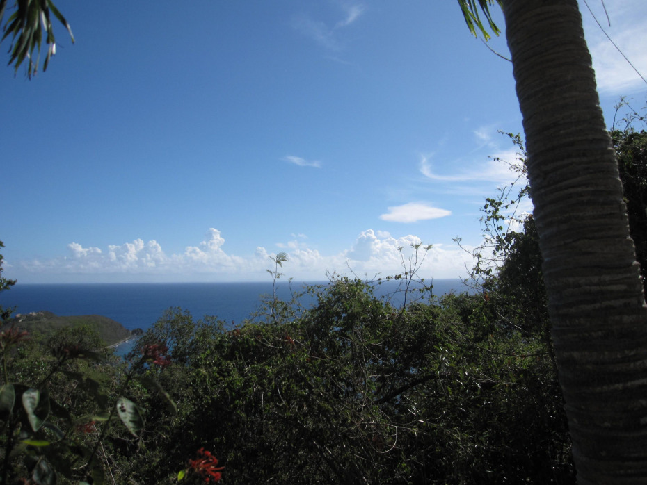 Gorgeous Caribbean Sea Views