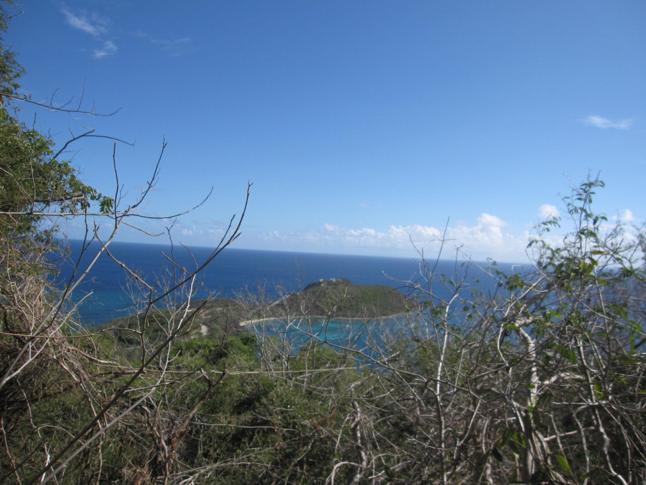 Direct view of glistening Rendezvous Bay
