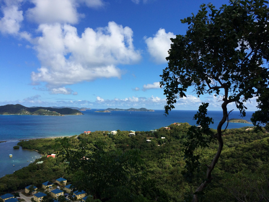 Calabash View