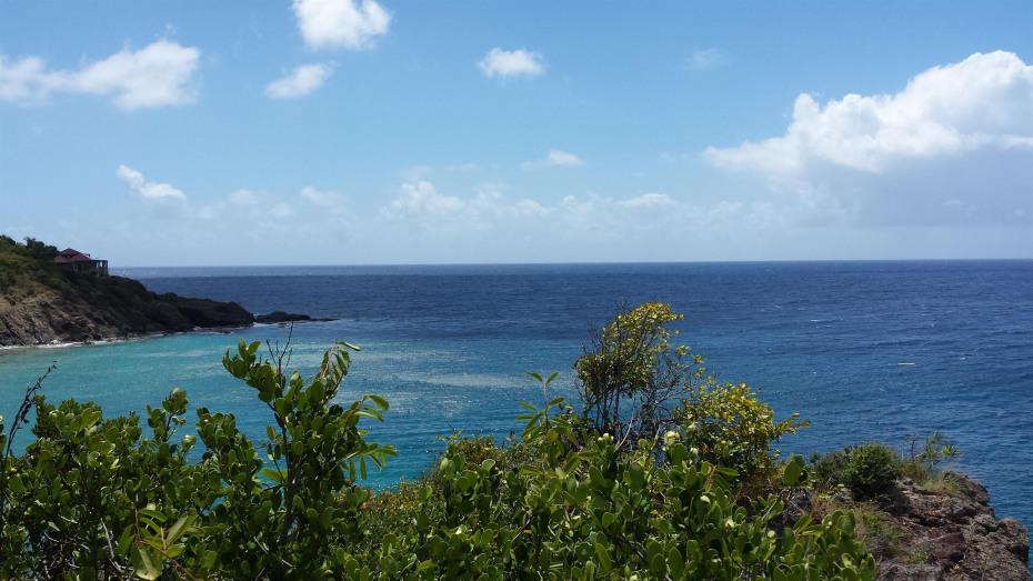 135 CH Reef