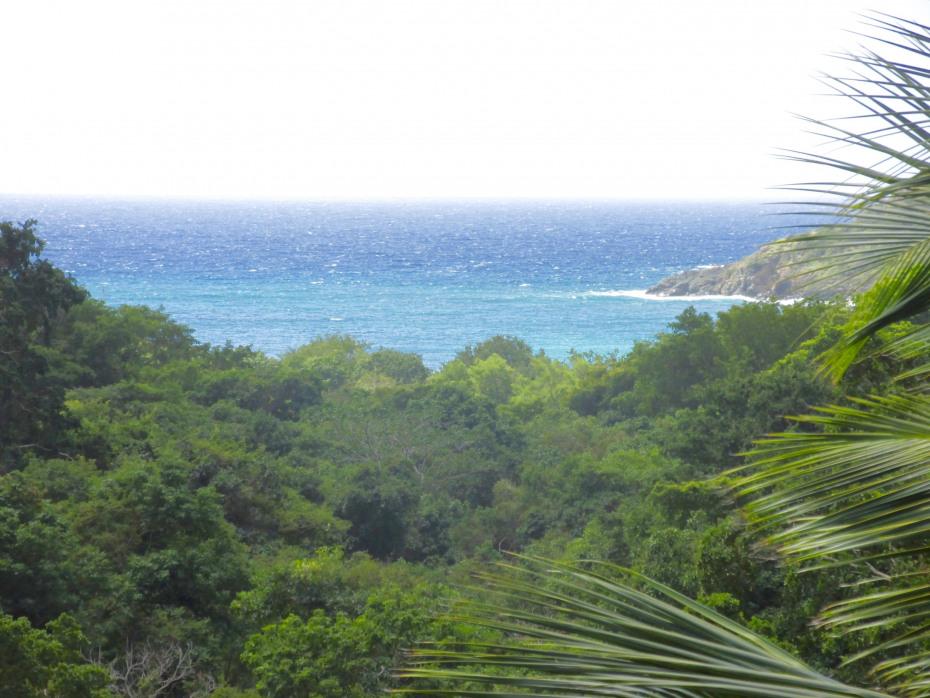 Beautiful Fish Bay Views