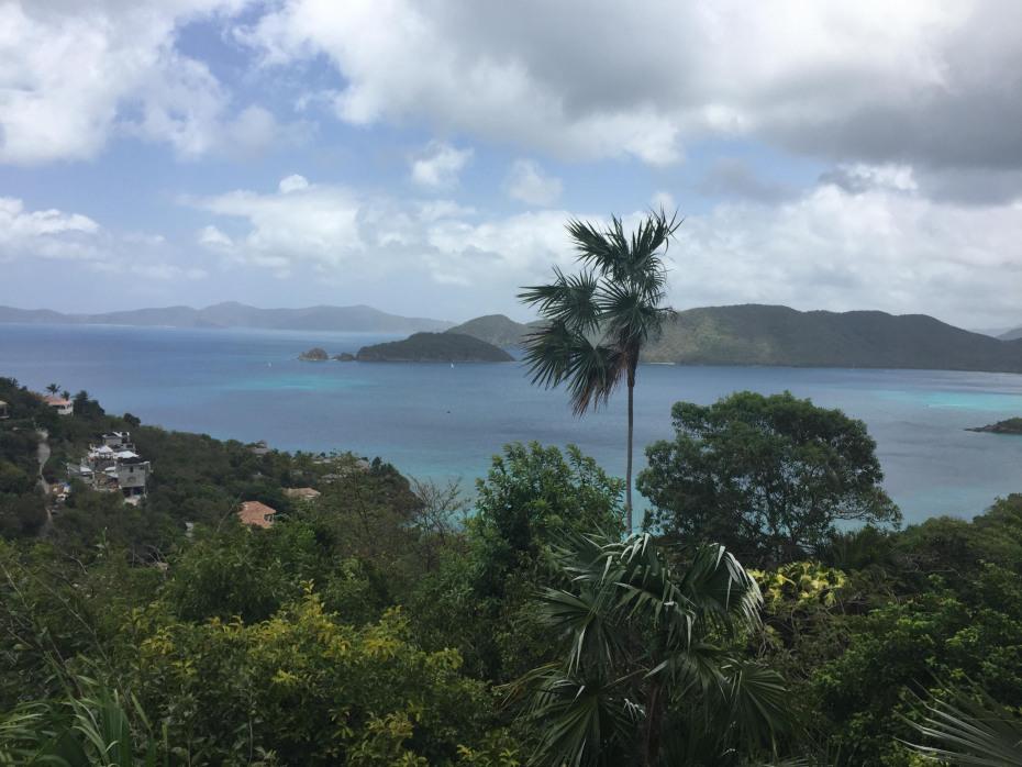 View Looking Across 12-1 Peter Bay