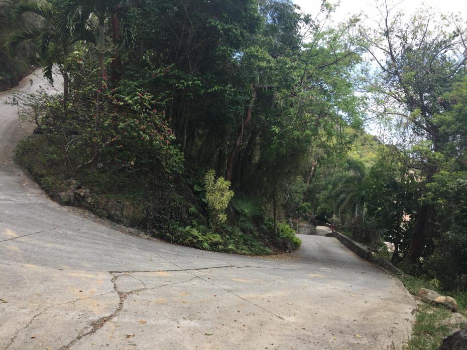Paved & Landscaped Roads