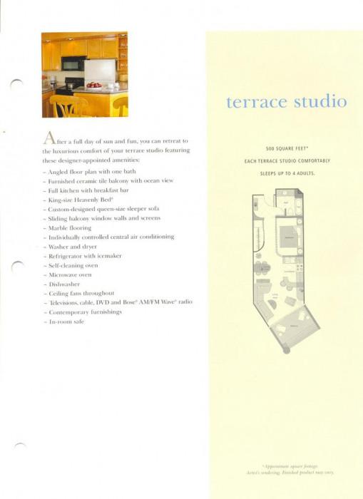 Studio Terrace Floor Plan