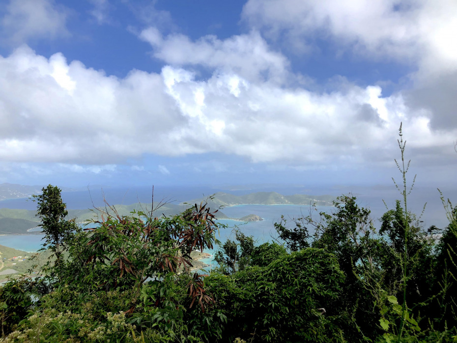Beautiful BVI and Coral Bay View