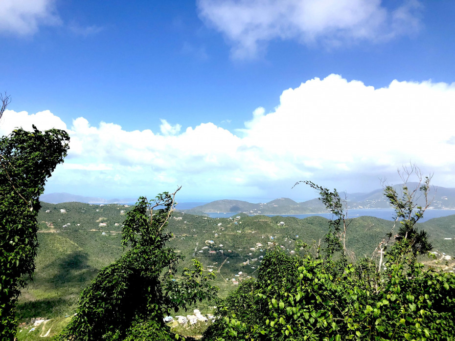 View over Coral Bay Valley